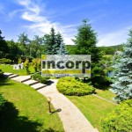 incorp-photo-41330387.jpg