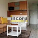 incorp-photo-41879903.jpg