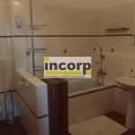 incorp-photo-42018619.jpg