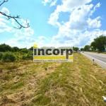 incorp-photo-42045302.jpg