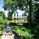 incorp-photo-41062542.jpg