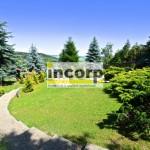 incorp-photo-41062556.jpg