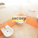 incorp-photo-43114613.jpg