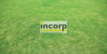 incorp-photo-43323052.jpg