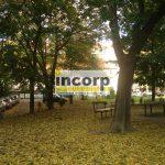 incorp-photo-43725608.jpeg